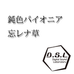 nibiiro pioneer-append mix / D.S.L