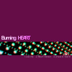 BurNing HeaRt OTHER MIXES / U-ji aka 霊長類P